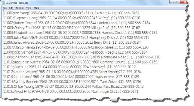 Text File Format
